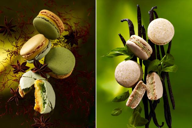 03 - Les Macarons de Pierre Herme