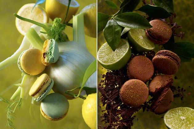 04 - Les Macarons de Pierre Herme